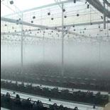 Системы тумана для офисных и производственных помещений