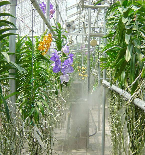 системы FOGCO для туманообразования и систем создания микроклимата для парников и оранжерей